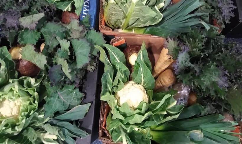 Find a Better Food Trader 21